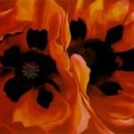 Georgia O'Keefe - Oriental Poppies