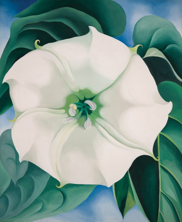 Georgia O'Keeffe's 1932 Jimson Weed/White Flower No. 1 is just one of the over 100 pieces featured in the traveling O'Keeffe show. Image c/o Tate Modern.