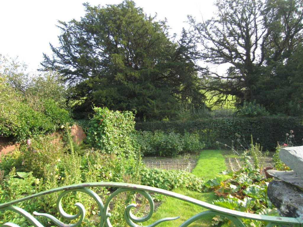 Part of the garden at Hill Top. Image c/o author.