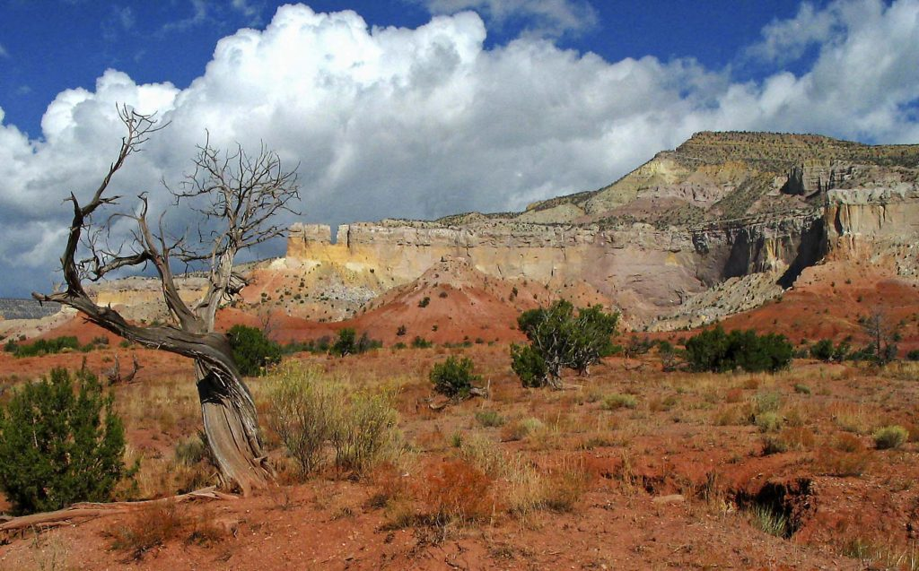 The landscape near Ghost Ranch served as an inspiration for O'Keeffe. Image c/o Ghostranch.org, image © Claudia Tammen.