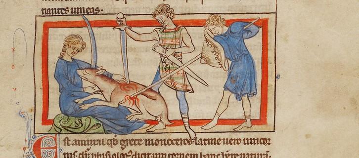 Hunters slay a unicorn in an illumination from the Northumberland Bestiary